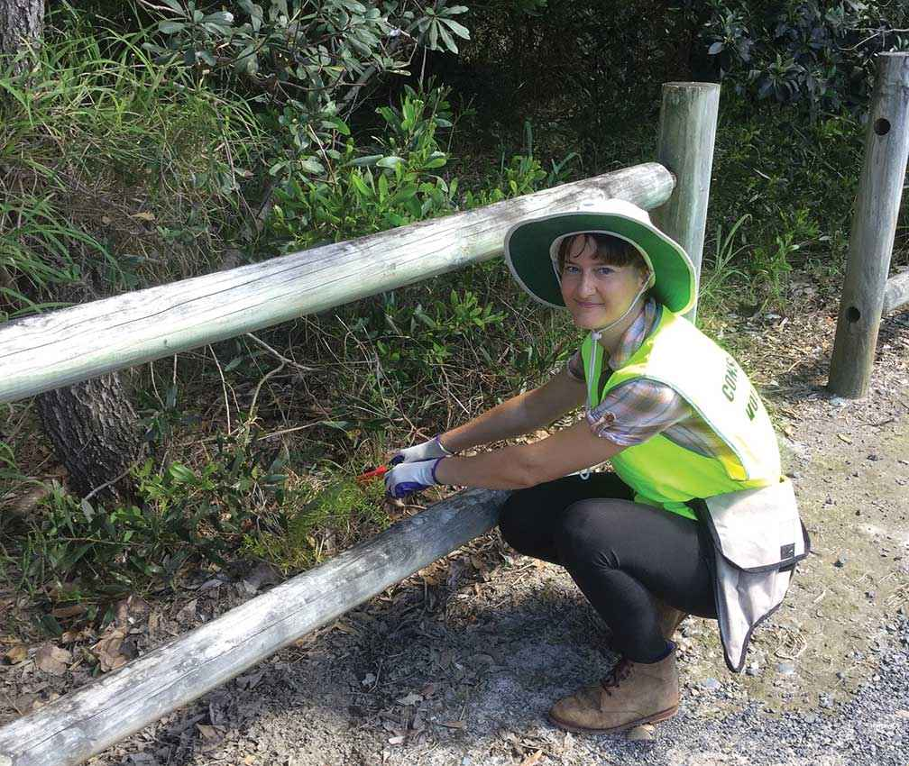 Kylie Barlow weeding a patch of asparagus fern during a Green Gym activity at Ballina, NSW.