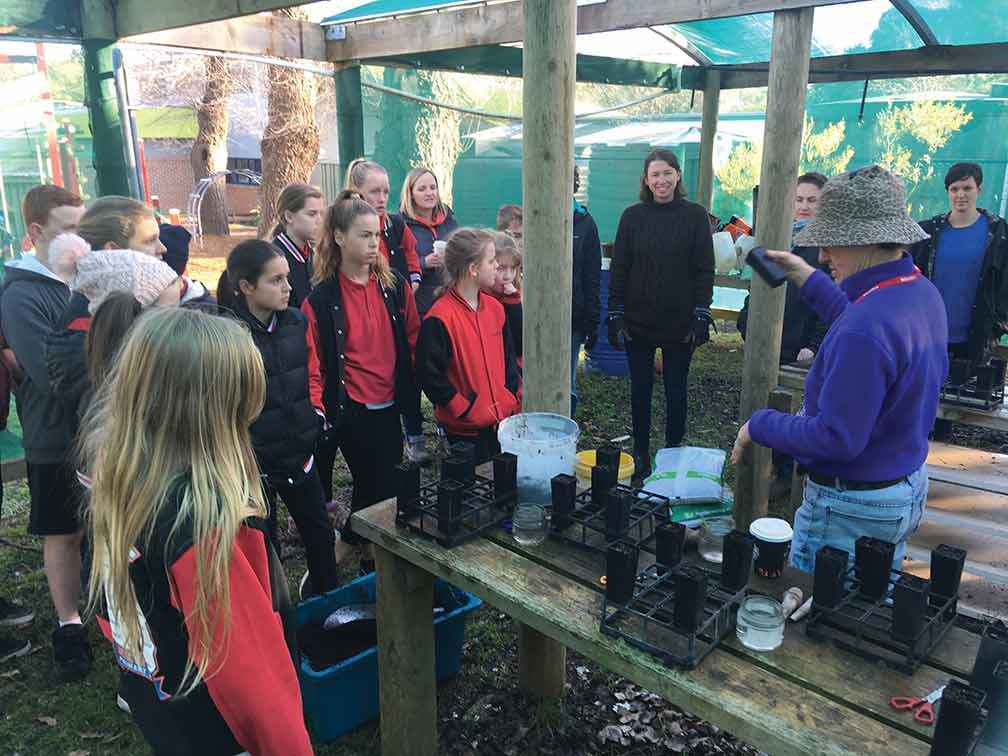Newham and District Landcare Group members share their propagation skills with students from Newham Primary School.