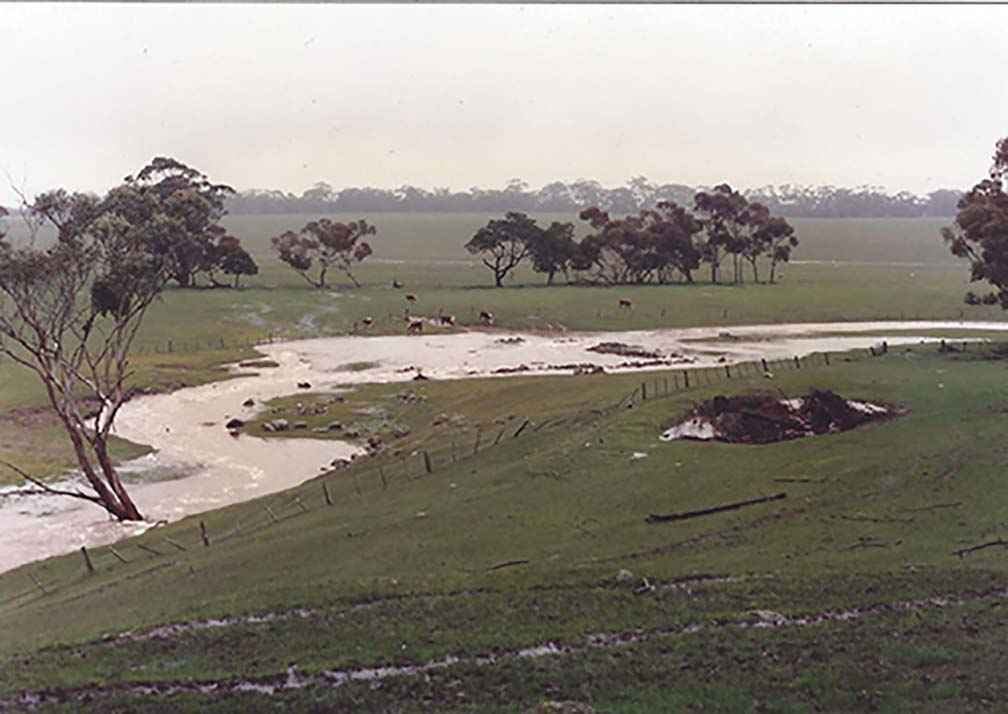 Spring Creek in 1996, before works commenced.