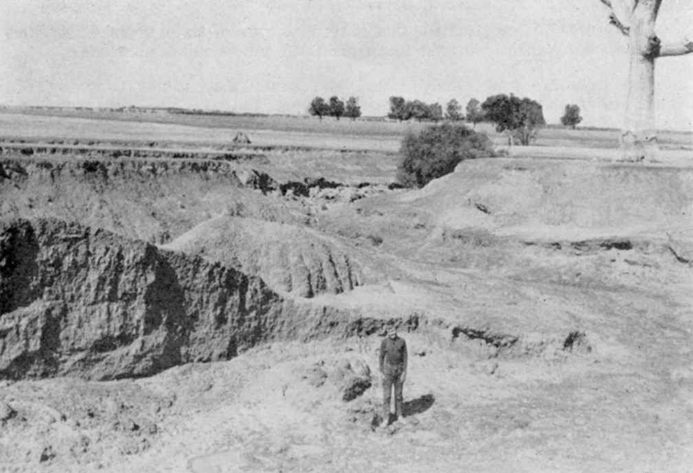 Gully erosion on Inverness in 1955. Geoff Henderson's work on the property saw these gullies completely halted and repaired. Son Tim is standing in the gully.