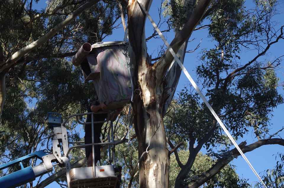 Wheelie Bin Nest Box on to tree.jpg