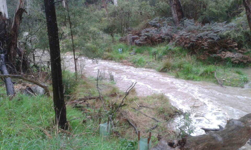 AND CREEK FLOOD (1).jpg